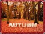 Seasonal Fabrics. All About Fall.