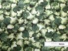 Broccoli 1/4yd