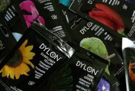 Dylon dies