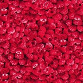 Raspberry 1/4yd