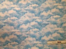 Skies 6 1/4yd